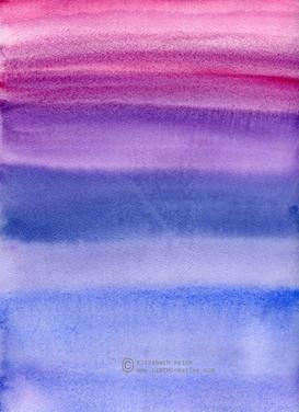 Celebrating Violets Color Field
