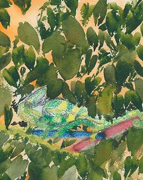 Whimsical-Chameleon-ElizabethR-72dpi.jpg