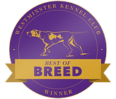 WKC_144_BestOfBreed_Button_V1.png