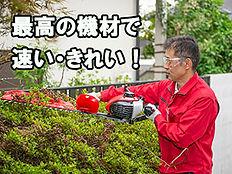 庭木剪定,生垣の剪定,庭掃除,植木屋さん,造園屋