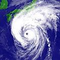 東京のアンテナ修理 台風被害