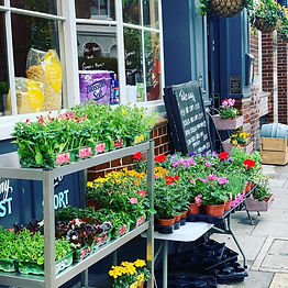 Outside shot from The Duchess pub in W6 showing a display of flowers on sale