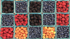 ¿What are superfoods?