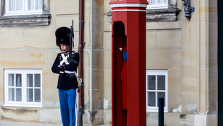 Guarding PM Palace Denmark.jpg
