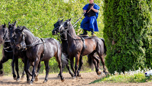 Hungarian Horsemen.jpg