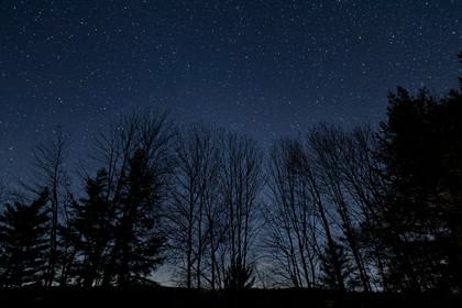 Western Night Sky