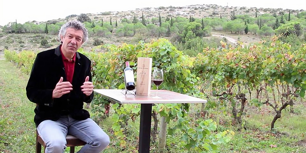 Gerard Betrand Wines
