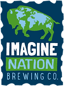 Imagine Nation Logo