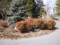 plantings002lg.jpg