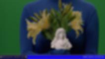 Léa Porré, lea porre, royalist dream, monarchy, roi de france, return king, legitimism, central saint martins degree show