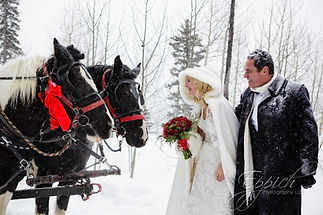 brideandgroomwinter.jpg