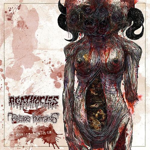 "Agathocles / Restos Humanos - Restos Agathos - split 7"""