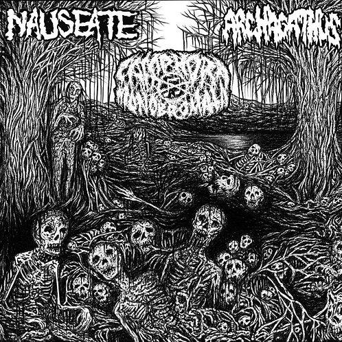 Archagathus / Camphora Monobromata / Nauseate - 3way split CD