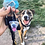 Thumbnail: Custom Pet Head Keyring