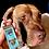 Thumbnail: Custom Pet Head x2 | x3 Keyfob Upgrade *ADD-ON*