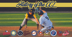 History of the CCL Website Image