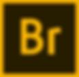 2560px-Adobe_Bridge_CC_icon.svg.png