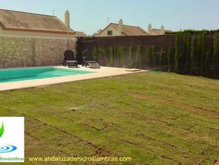 Andaluza de Hidrosiembras ¡os da la bienvenida a su blog de jardinería y medio ambiente!