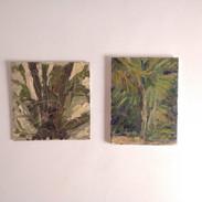Díptico botânico - estudo de palmeira e