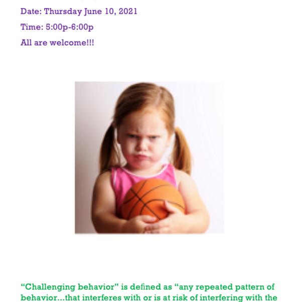 Challenging Behavior Workshop