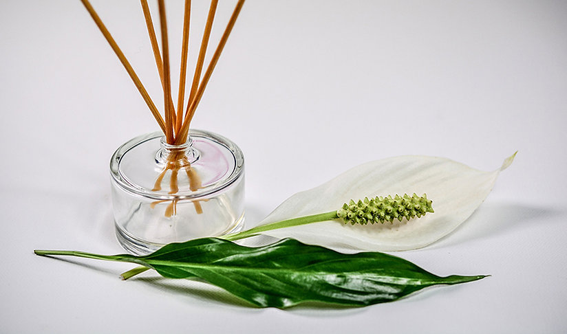 scent-1059419_1920-web.jpg