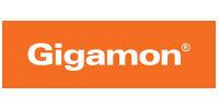 logo_gigamon_no-border_lg.jpg