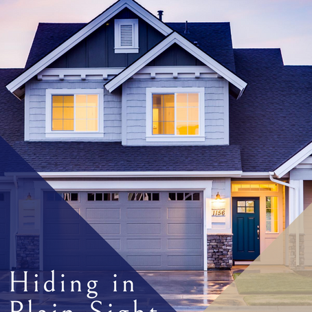 HIDING IN PLAIN SIGHT: Your home as a Long Term Care Policy