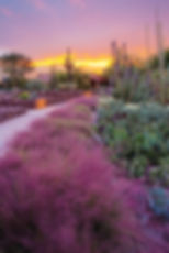 Garden-sunset_annual_retouch.jpg