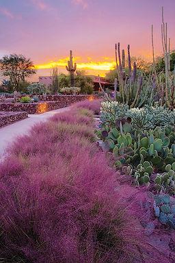 Garden-sunset_annual_retouch.jpg