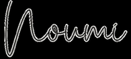 noumi logo.png