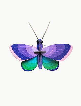 Insecte 3D à construire - Papillon violet