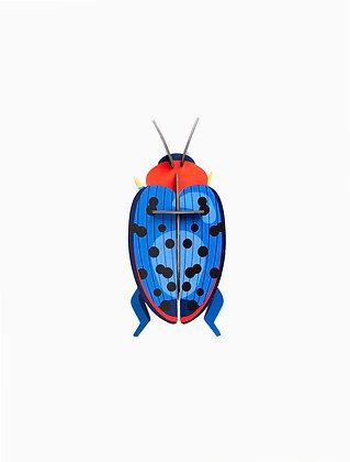 Insecte 3D à construire - Coléoptère bleu