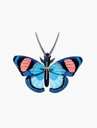 Insecte 3D à construire - Papillon bleu