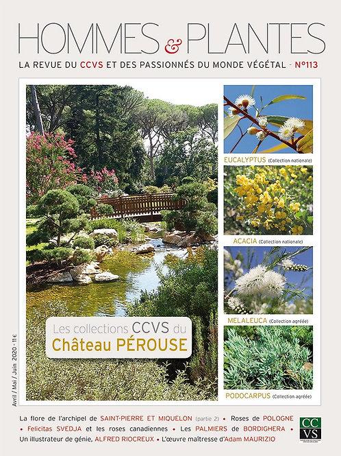 Hommes et Plantes N°113