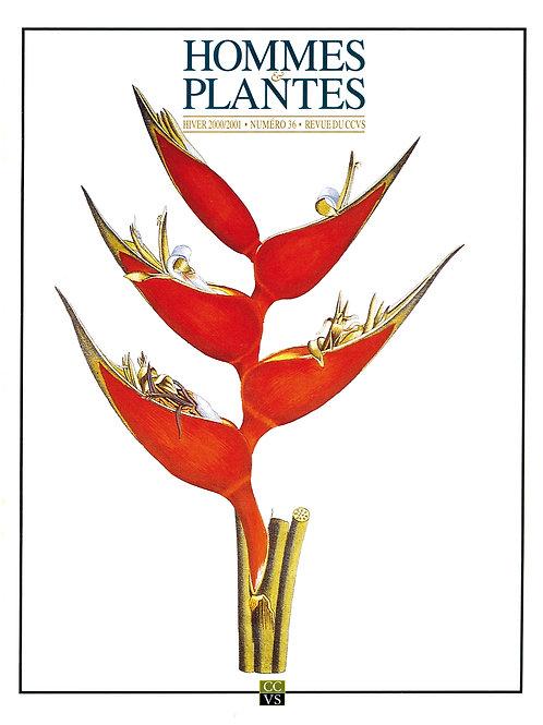 Hommes & Plantes n°36