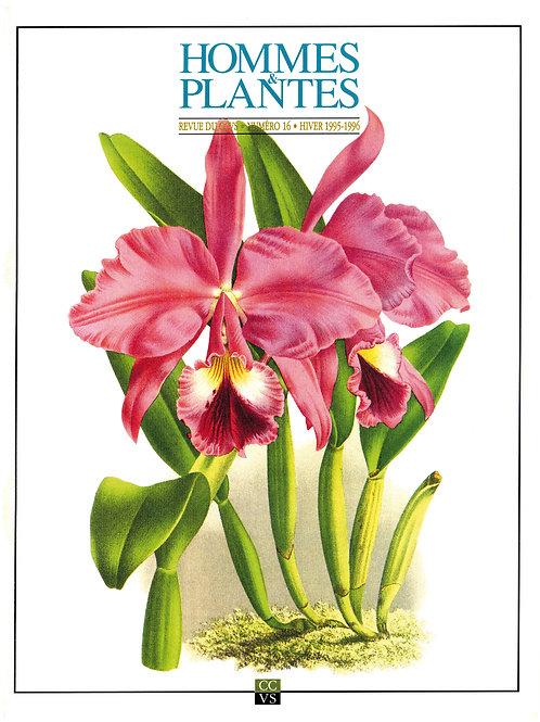 Hommes & Plantes n°16