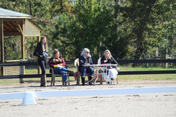 Judges for the fall show