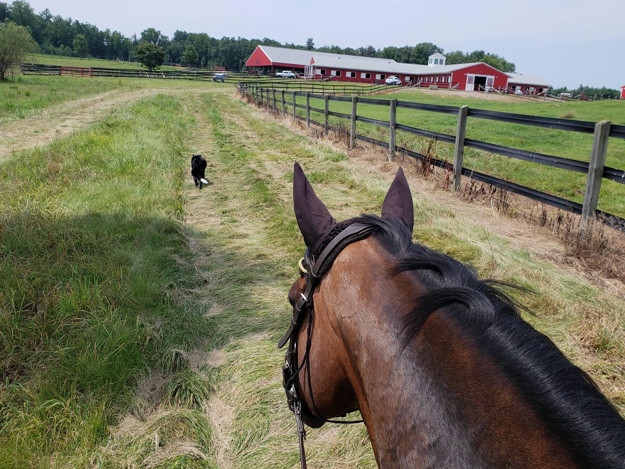 Smax trail riding