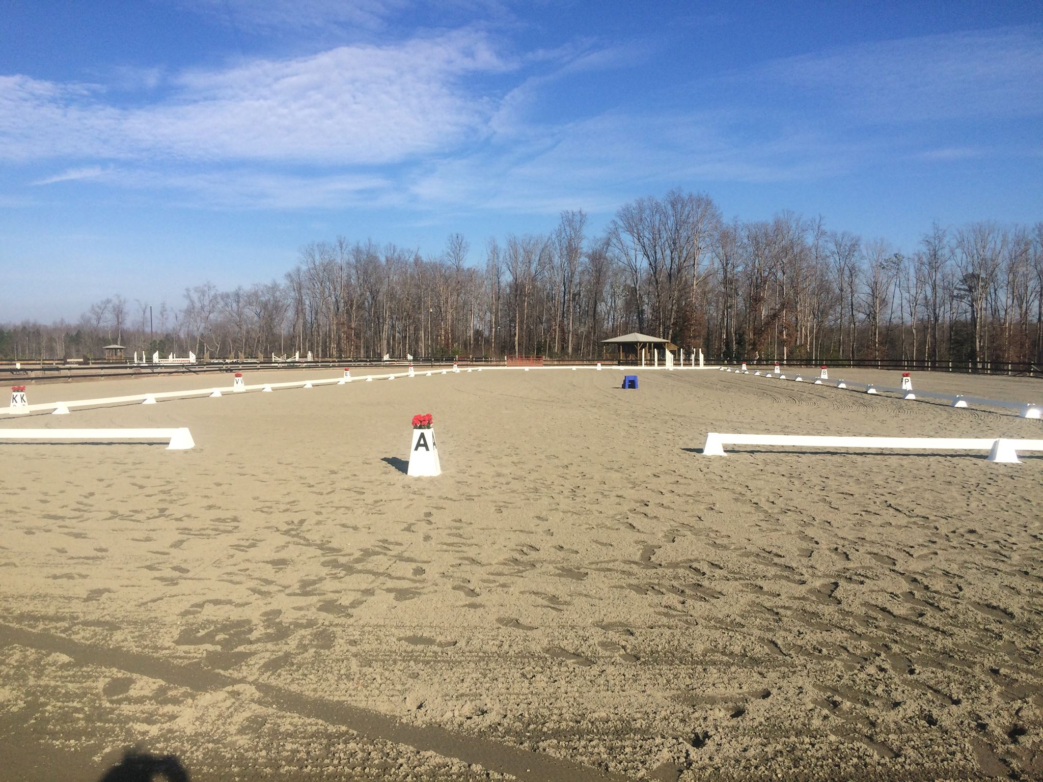 Full sized Dressage arena