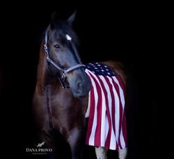 Reagan being patriotic!