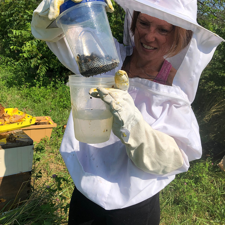 Practical Beekeeping Class and Field EXPERIENCE!