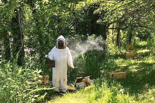Pollination - Garden Hive Rental