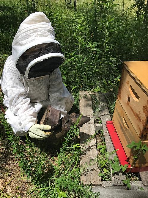 FULL Inspection - KC Area - Per Hive