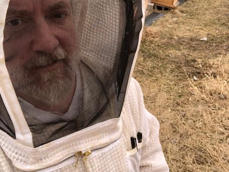 The dark side of beekeeping...