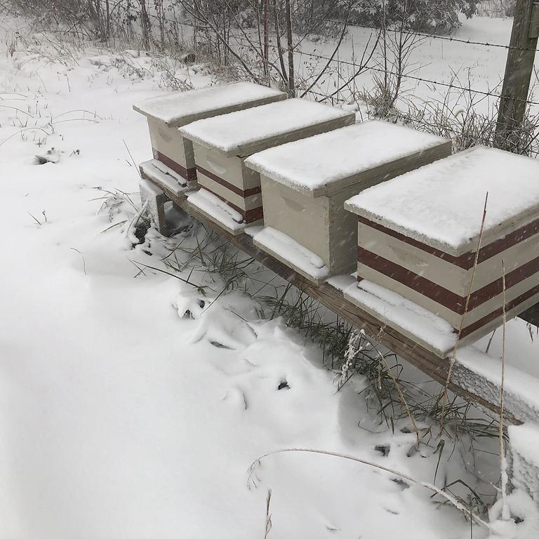 Winter Hive Preparation - At the Barn