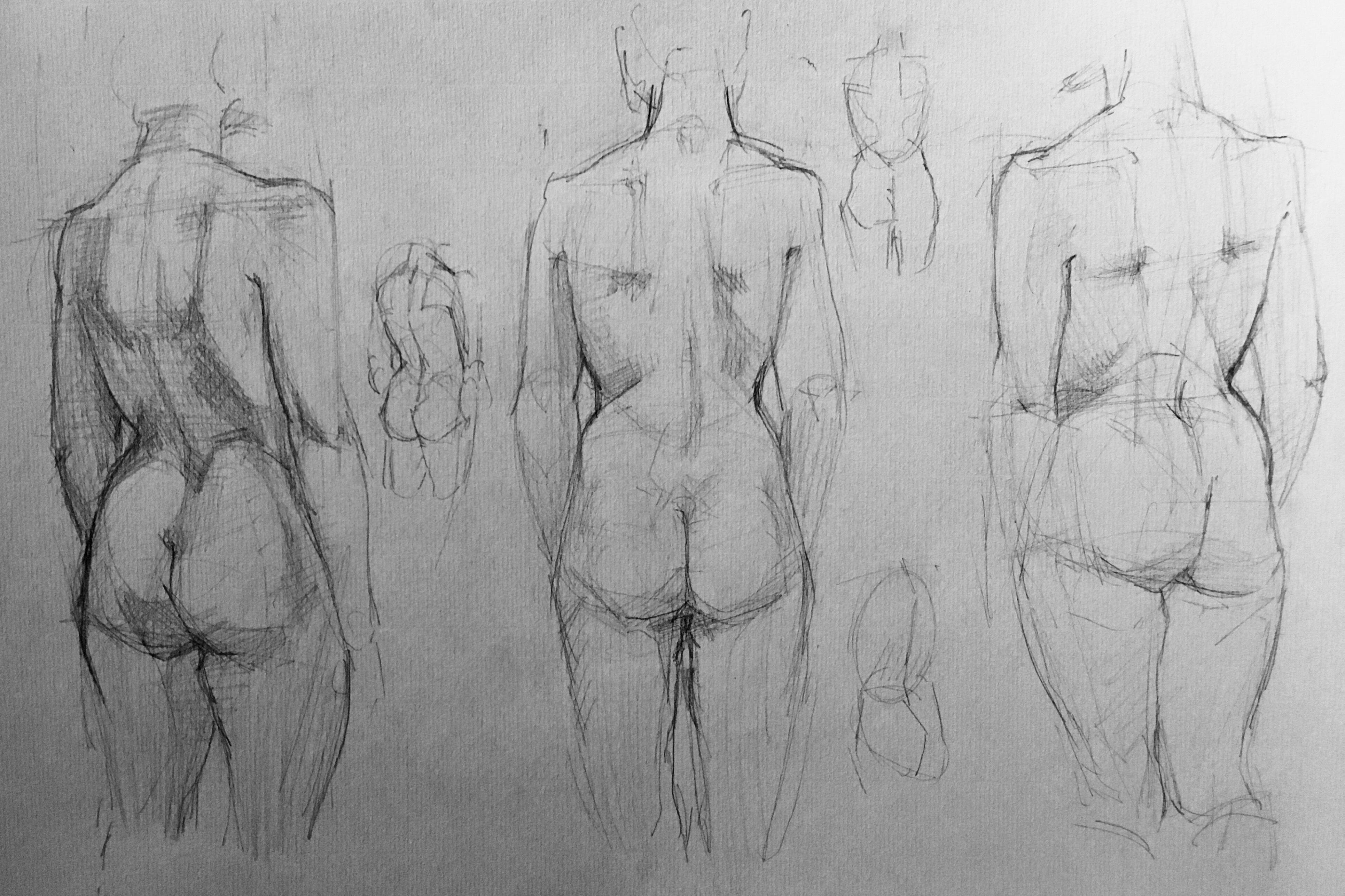 Female Back Study