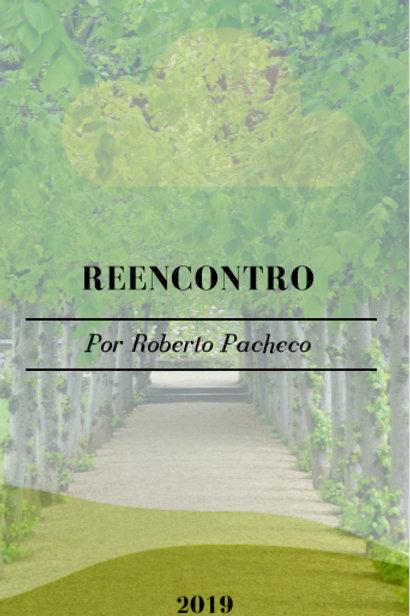 E-BOOK Reencontro  - Poesia
