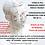 Thumbnail: Curso de formação livre em Fgia Integrativa com ênfase em MTC
