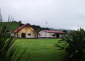 Update on Taniwha Marae Usage (01.08.20)