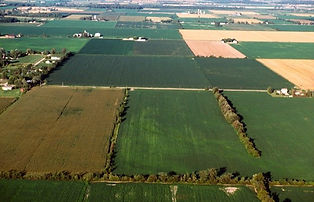 top view of a field
